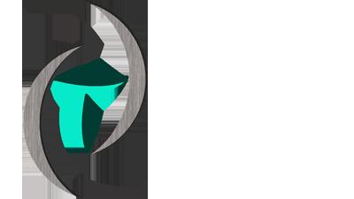 taqetna en logo small icon