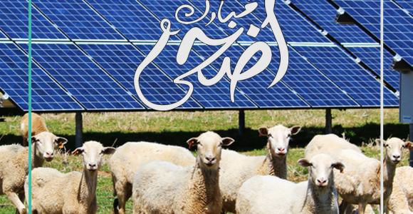 Eid Mubarak from Taqetna